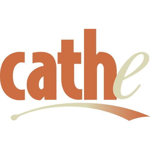 Cathe Friedrich