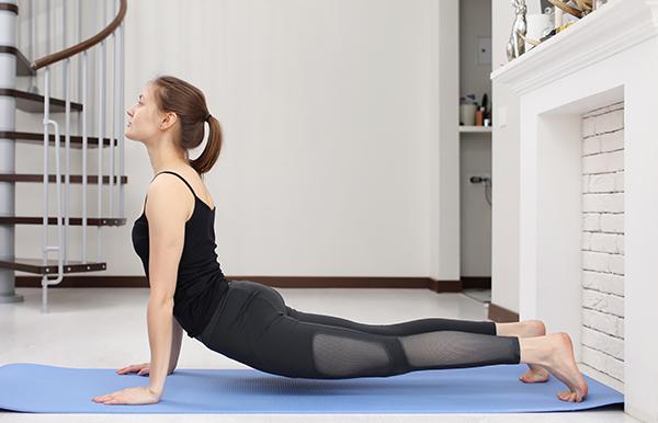 Virtual Fitness Home User
